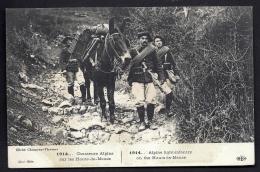 CPA ANCIENNE FRANCE- MILITARIA- CHASSEURS ALPINS EN PATROUILLE SUR LES HAUTS-DE-MEUSE- MULE CHARGÉE- TRES GROS PLAN - Guerre 1914-18