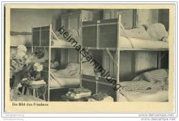Ein Bild Des Friedens - Schlafstellen - Foto-AK - Ausrüstung