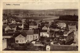 BELGIQUE - NAMUR - ANDENNE - SEILLES - Panorama. - Andenne
