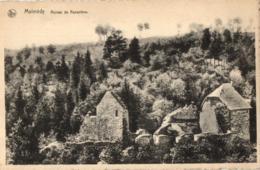 BELGIQUE - LIEGE - MALMEDY - Ruines De Renastène. - Malmedy