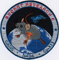 Rodent Research-6 SpaceX-13 International Space Station Iron On Patch - Patches