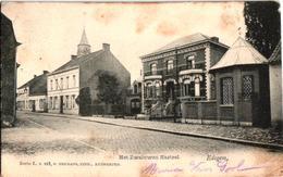 1 Oude Postkaart   EDEGEM   Edeghem  Het Zwaluwen Kasteel    Drie Eikenstr   Uitg.  Hermans N°115 - Edegem