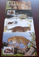 DPR Korea - 1998 - N°Yv. 2801 à 2804 - Panthère / WWF - Maxi Cards / Cartes Maxi - Big Cats (cats Of Prey)