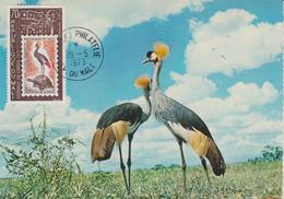 Carte Maximum Oiseaux Mali PA 175 Grues - Mali (1959-...)