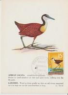 Carte Maximum Oiseaux Sénégal 310 Jacana - Sénégal (1960-...)