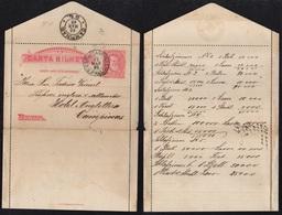 CAMPINAS - BRESIL - BRASIL / 1893 ENTIER POSTAL - CARTE LETTRE (ref LE2432) - Brésil