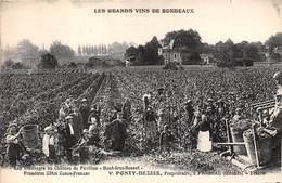 33-FRONSAC- VENDANGES AU CHATEAU DU PAVILLON - HAUT-GROS-BONNET- PREMIERES CÔTES CANON-FRANSAC V;PONTY PROPRI - France