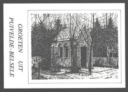 Groeten Uit Puivelde - Belsele - Nieuwstaat - Boskapel - Illustratie - Sint-Niklaas