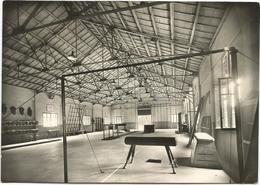 X3729 Spoleto (Perugia) - Scuola Allievi Sottufficiali - Palestra / Viaggiata 1956 - Autres Villes