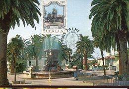36809 Italia, Maximum  1977 The Fountain  Of Palmi  Calabrien - Cartas Máxima