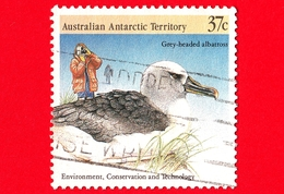 Territorio Antartico Australiano - AAT - Usato - 1988 - Protezione Dell'Ambiente - Albatro  - Grey-headed Albatross - 37 - Territorio Antartico Australiano (AAT)