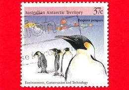 Territorio Antartico Australiano - AAT - Usato - 1988 - Protezione Dell'Ambiente - Pinguini  - Emperor Penguin - 37 - Usati