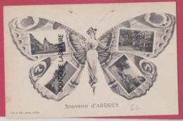 62 - ARDRES- --Souvenir Multivues En Forme De Papillon - Ardres