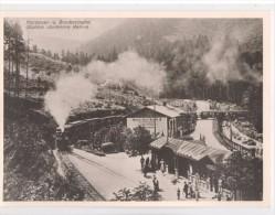 Wernigerode, Station Steinerne Renne, Dampflok-Zug, Eisenbahn, Bahnhof - Harzquer U Brockenbahn (Schierke Im Harz ) - Stazioni Senza Treni