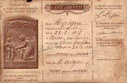 REF 1669-2018 CARTE D IDENTITE PUPILLE DE LA NATION MINISTERE DE L INSTRUCTION PUBLIQUE ET DES BEAUX ART 1920 - Autres
