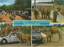 Deutschland Tüddern Elephant Olifant Lion Leeuw Lama / Mercedes Volkswagen - Animaux & Faune