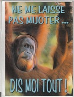CARTE DE VOEUX - NE ME LAISSE PAS MIJOTER ... DIS MOI TOUT ! - Non Ecrit - Faire-part