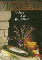 Alose à La Bordelaise - Recettes (cuisine)