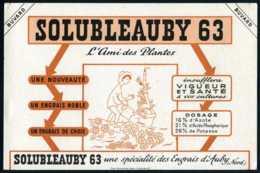 BUVARD Agriculture # SOLUBLEAUBY 63 # Auby (Nord) - Farm