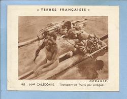 Chromo Terres Françaises En Océanie 48 Nouvelle-Calédonie Transport De Fruits Par Pirogue 2 Scans - Chromo