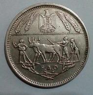 EGYPT - 10 Piastres - Km 418 -1970 - UNC - FAO - Oxen - Agouz - Egitto