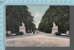 Dresden -  Animated CPA Hauptatlee Im Grossen Garten  -  ED: 6065 Hermann Poy - Dresden