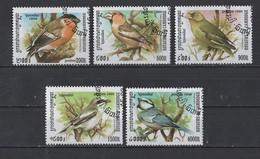 1998 Cambodge  Lot De 5 Oiseaux Oblitér - Sparrows