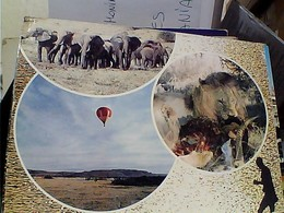 KENIA VEDUTE  MONGOLFIERA ELEFANTI  LEONE ELEPHANT VB1988  GU3043 - Kenya