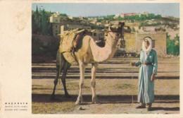 NAZARETH - BEDOUIN WITH CAMEL - Jordan