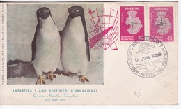 ANTARTIDA Y AÑO GEOFISICO INTRNACIONAL, ARGENTINA 1959- BLEUP - International Geophysical Year