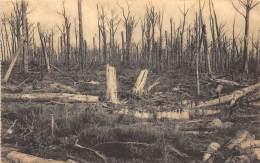 Forêt D'HOUTHULST - 1914-18 - Le Martyre D'une Forêt - Houthulst