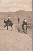Cavalier Arabe Et Arme Sur La Route De Jericho ( Très Très Bon ETAT ) WW2054) - Palestine