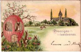 Dressed Bunny's Rabbits Embossed Vintage 1905 Russian Latvian PHOTO POSTCARD - Animals