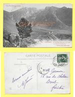 CPA 65 CAUTERETS Plateau Pastoral Du LIBEY Maison Forestière ANIMEE 1908 - Cauterets