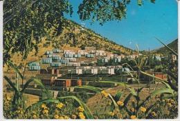 Iraq Beqal Erbil Uncirculated Postcard - Iraq