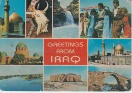 Iraq Uncirculated Postcard - Iraq