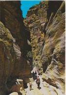 Jordan The Sik Petra Main Entrance Circulated Postcard - Jordan