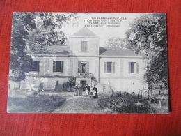 D 33 - Vue Du Château Lagraula - 1er Cru Classé Saint Sulpice Et Cameyrac - Chèze Senut Propriètaire - Other Municipalities