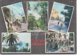 Georgia Sukhumi Uncirculated Postcard - Georgia