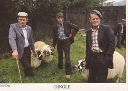CPM DINGLE FAIR DAY Paysans Avec Leurs Moutons ... - Ireland