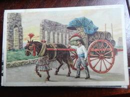 18080) ROMA CARRO DA VINO OSTUMI ROMANI CVIAGGIATA 1925 - Transports