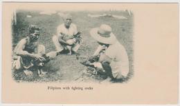 Comabattimento Di Galli - Fighting Cocks - Filippine - F.p. - Anni '1898 - Philippines