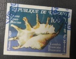 DJIBOUTI 1989 SHELLS IMPERF ! - USED OBLITERE CANCELED OBL U O RARE - Djibouti (1977-...)