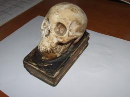 Ancien Presse Papiers En Forme  De Livre Et Tete De Mort En Séramique - Paper-weights