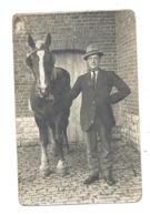 Photo Carte - Fermier Présentant Son Cheval - Ferme, Agriculture, Attelage,... (Y16) A SITUER - Veeteelt
