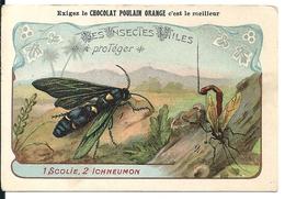 "Chromos Chocolat Poulain Orange Série Insectes Utiles N°14 ""Scolie Ichneumon"" - Poulain"