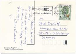 Mi 23 Solo Postcard Tree Oak Quercus Robur - 28 December 1994 Prague To Denmark - Lettres & Documents
