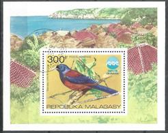 Malagasy Madagascar 1975 Year , Block Used - Birds - Vögel