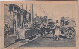 Chine :  PEKIN- PEKING :  Street   Scene  , Charette  , Abreuvoir  Cheval  ( écrite  à  Shangaï  1928) - Chine
