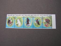 Malawi Vögel Birds   Lot  ** MNH - Malawi (1964-...)